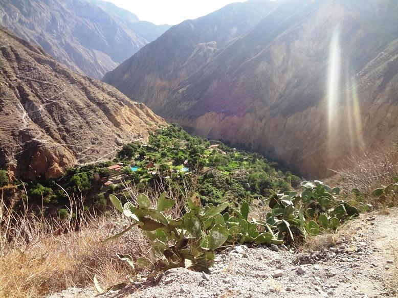 Cañon del Colca: das loucuras/cagadas que fazemos na vida
