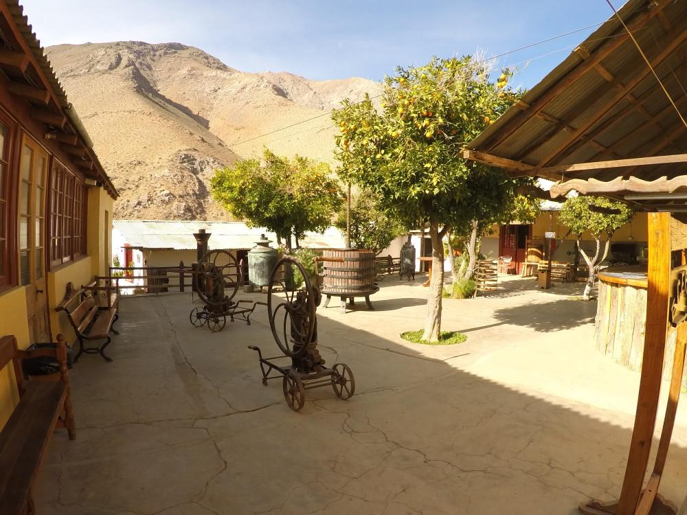 Valle del Elqui: Pisco, poesia e muitas estrelas no Chile