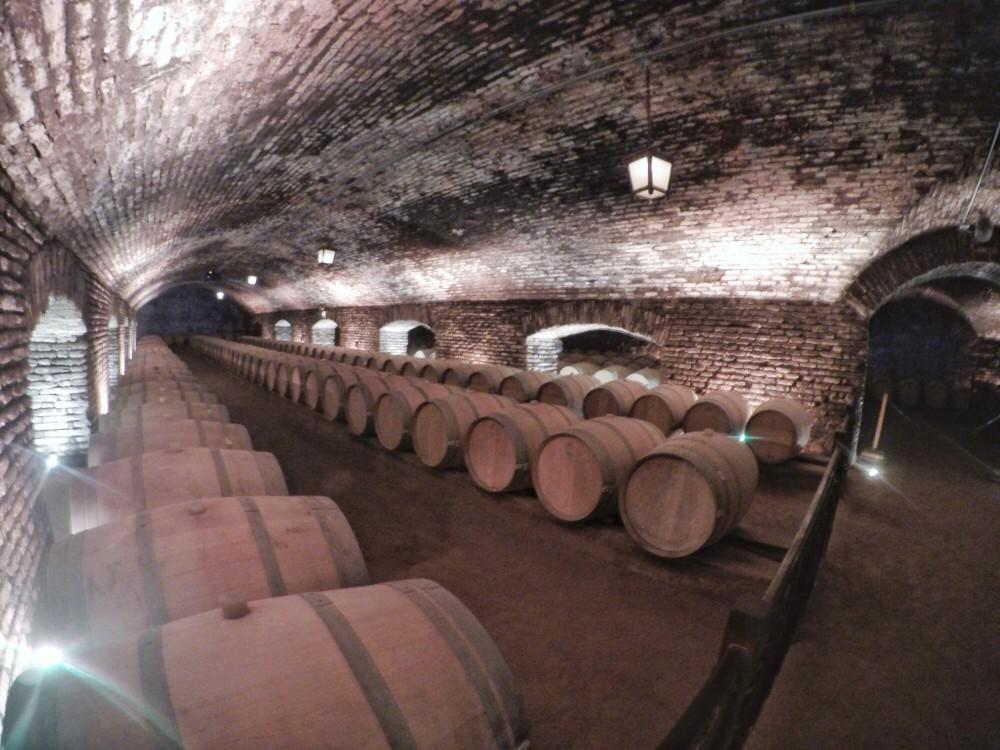 Como é a visita à vinícola Concha y Toro?