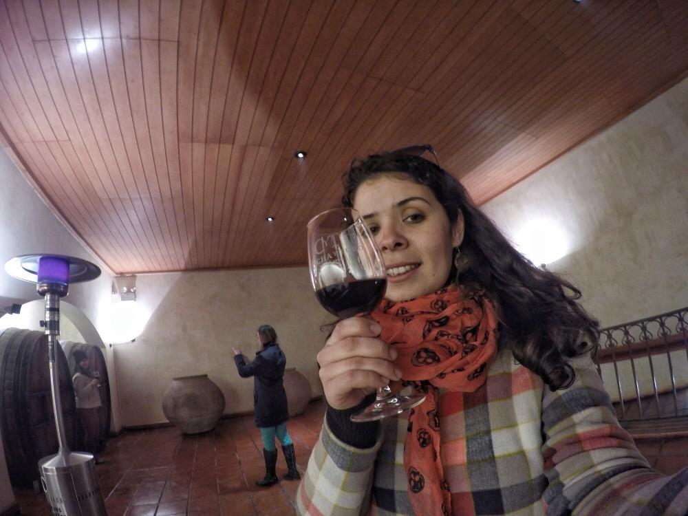 Visita à Concha y Toro