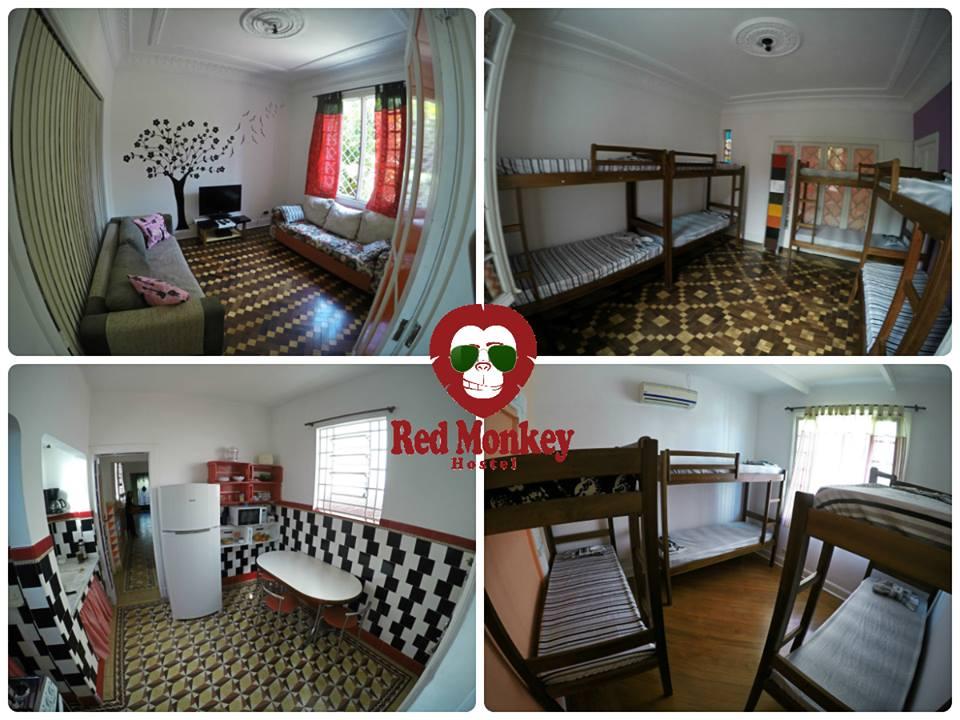 Dica de hostel em São Paulo: Red Monkey Hostel