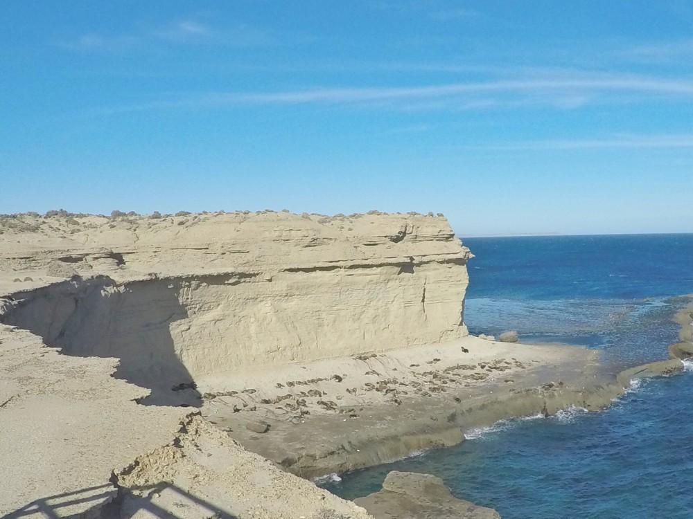 Também tem leões marinhos na Península Valdés! E muitos!!!