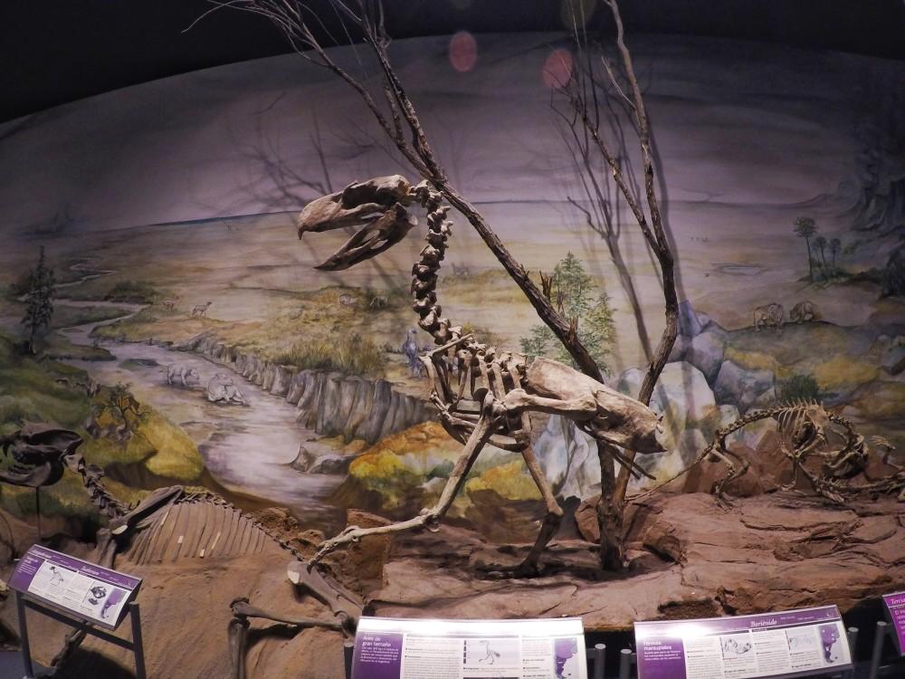 O MEF e seus dinossauros em Trelew