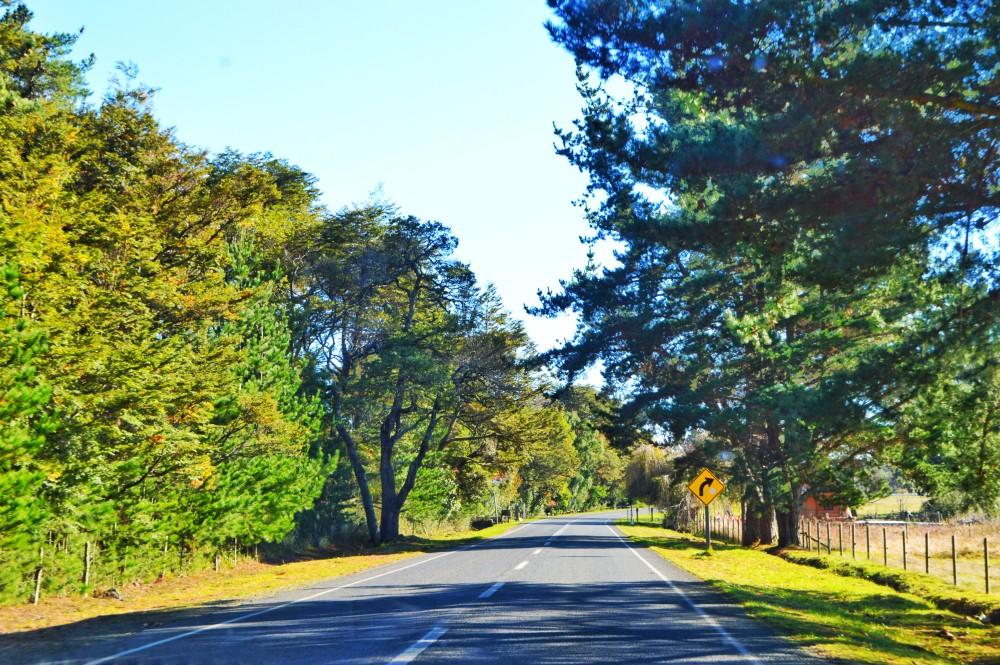 Aproveitado 100% já que até de dentro do carro dava pra aproveitar essa paisagem linda!